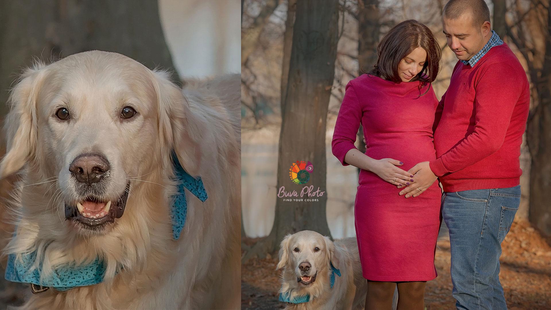 fotograf-maternitate17